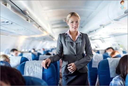 uddannelse stewardesse