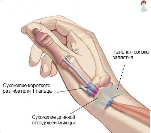 ryckningar i fingrar