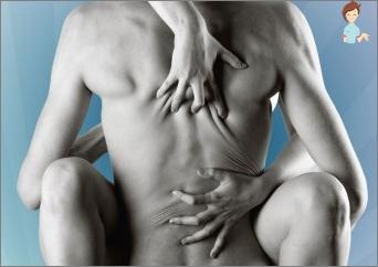 navn på muskler i kroppen øktxlyst kvinner