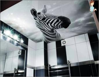 Select ceilings