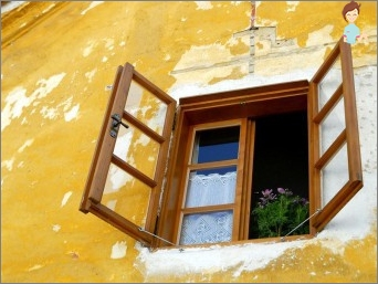 Plastic or wooden windows
