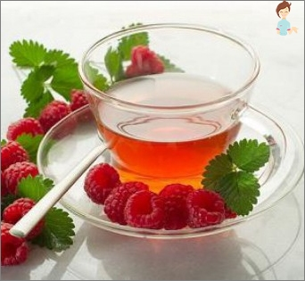 Leaves raspberries during pregnancy: Is it possible to use tea made from them