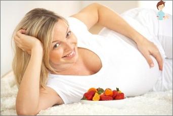 Mityba nėštumo metu