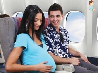 Skraidymas lėktuvu ir nėštumas: mano trūkumų