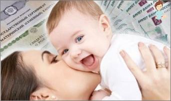 Maternity Capital: design subtleties