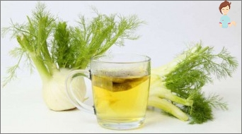 A decoction of dill will help get rid of abdominal cramps