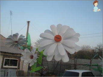 Daisies of plastic bottles - unfading beauty with his own hands!