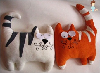 Įdomios idėjos priėmimo pagalvės, žaislai su savo rankas