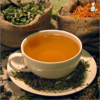 Treatment of cystitis herbs