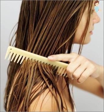 Ricinos aliejus plaukams