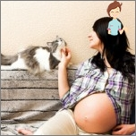 Toxoplasmosis and Pregnancy - sources of infection, symptoms, treatment