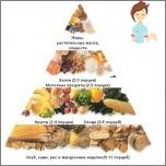 التغذية المناسبة - أساسيات