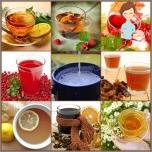 كومبوت، الشاي، مورس في التغذية المناسبة
