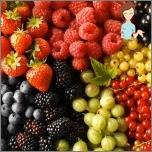 Die nützlichsten Produkte für Frauengesundheit - die Beeren des mittleren Streifens