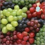 Die nützlichsten Produkte für Frauengesundheit - Trauben