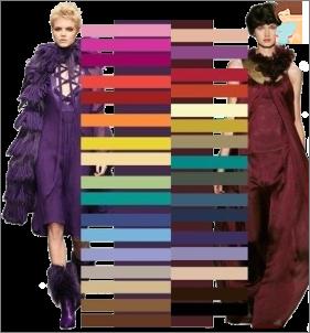 نحن غرس الذوق والأناقة: نحن نتطلع إلى مزيج الألوان