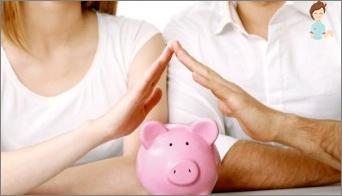 Wir planen ein Familienbudget