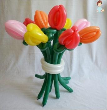 So machen Sie eine Kamille oder ein Blumenstrauß von Tulpen von Tulpen von Bällen zur Modellierung