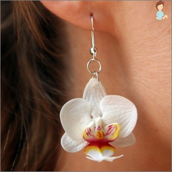 Create and needlewoman: how to make beautiful earrings from clay?