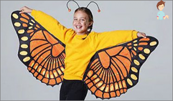 Make a New Year's suit of the butterfly with your own hands: Practical guide