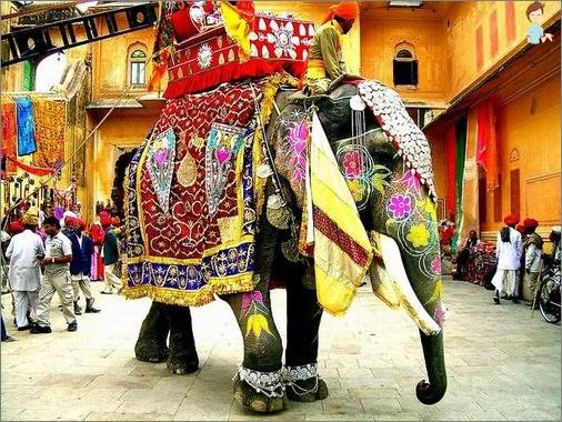 Neues Jahr in Mittel- und Südindien