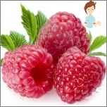 Nützliche Früchte während der Schwangerschaft - Himbeere